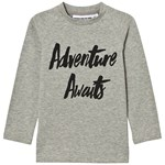 Gardner and the gang Adventure L/S T-paita, Harmaa