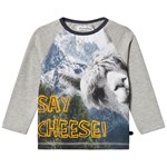 Minymo Pitkähihainen Paita With Photo Print Grey Melange