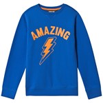Lands' End Blue Amazing Sweatshirt
