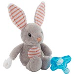 DrBrown Loveys Bunny  Pacifiers Blue