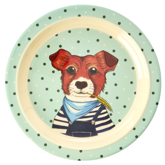 Rice Melamine Kids Lunch Plate with Farm Animals Print - Green