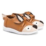 Emu Australia Burnt Orange Fox Face velcro Trainer